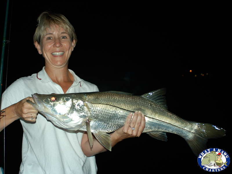 Fort Myers Night Fishing Charters