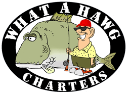 What A Hawg Charters Logo - Fort Myers Fishing Charters
